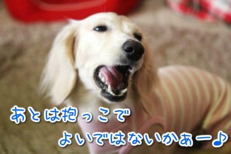 20150326100405.jpg