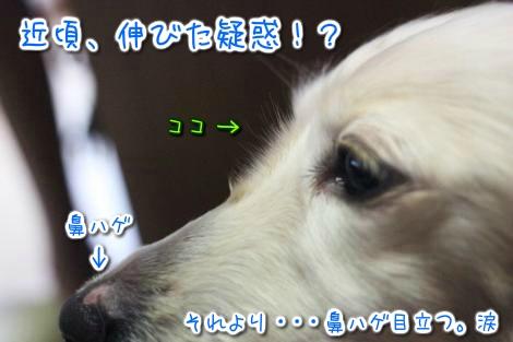 20150327102853.jpg