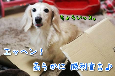 20150328183501.jpg