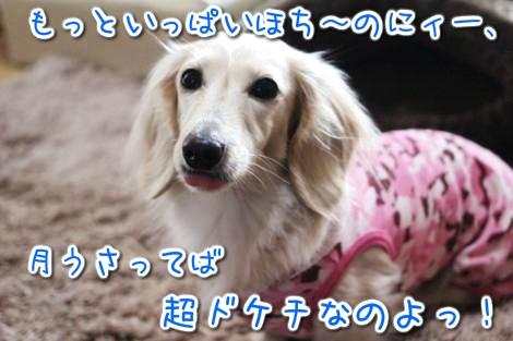 20150329094354.jpg
