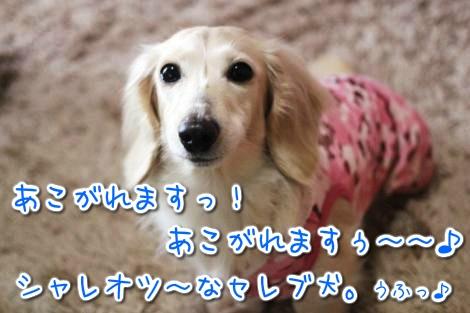 20150329095100.jpg