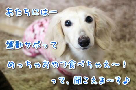 20150330020520.jpg