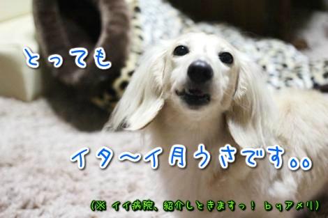 20150411012040.jpg