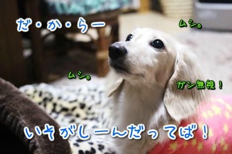20150414031818.jpg