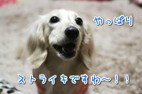 20150414032306.jpg