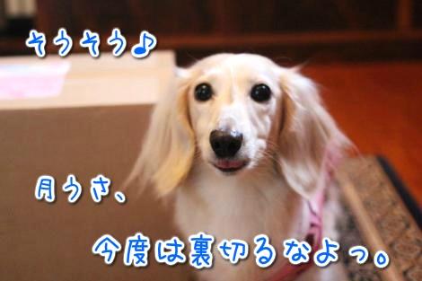 20150417144524.jpg