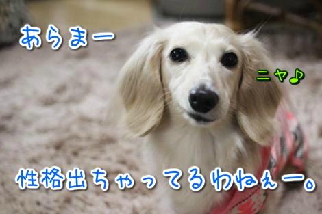 20150427093014.jpg