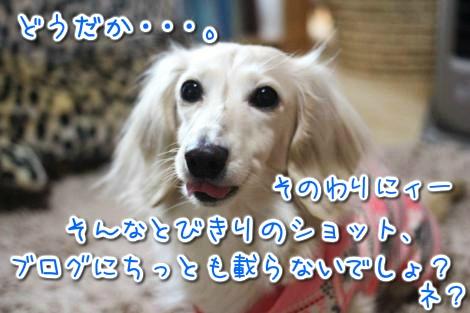 20150427094113.jpg
