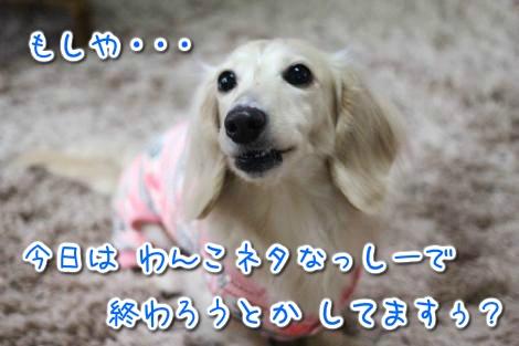 20150427094711.jpg