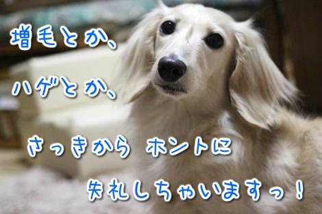 20150503030609.jpg