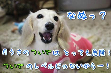 20150510094126.jpg
