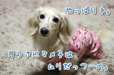 20150523053505.jpg