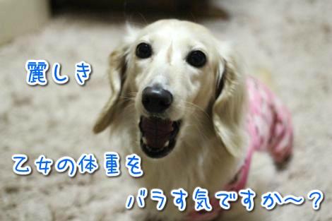 20150523054746.jpg