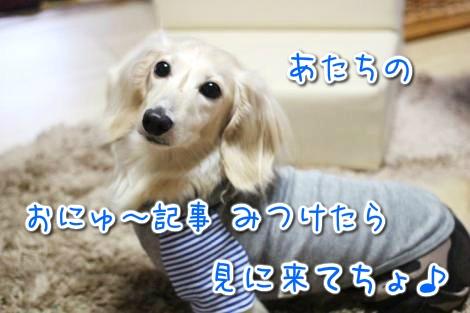 20150527174226.jpg
