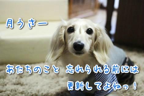 20150527174535.jpg