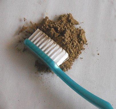 tulsitoothbrush.jpg
