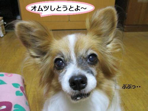IMG_0035_convert_20150702123907.jpg