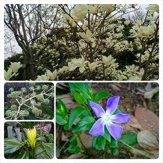 PhotoFancie_2015_03_18_20_22_15.jpg