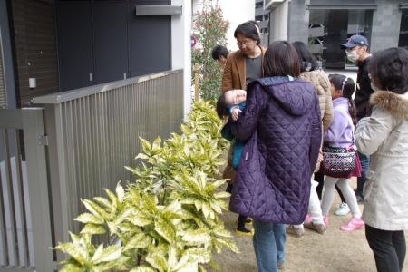 150314稲毛樹木観察会