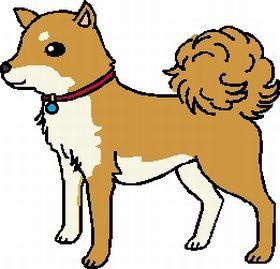 dog_g01.jpg