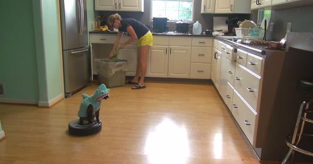 【1分50秒】ルンバでキッチンを徘徊するコスプレ猫。シュールすぎて笑えると話題に!