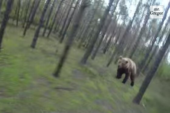 「ある日♪森の中クマさんに出会った~」歌さながらの衝撃映像!