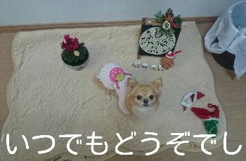 blog2014122503.jpg