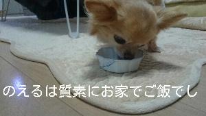 blog2014122703.jpg