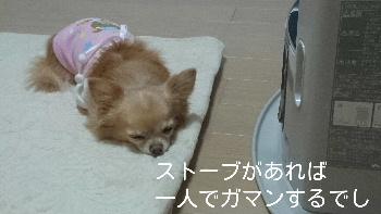 blog2014122805.jpg