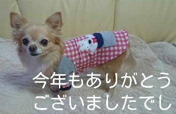 blog2014123101.jpg