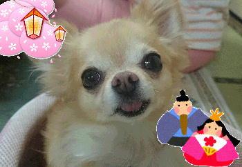 blog2015030303.jpg