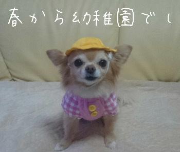 blog2015031401.jpg