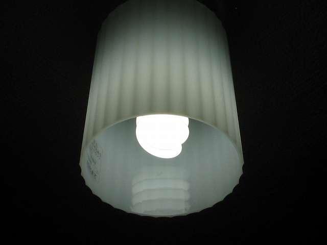 NEC 電球形蛍光ランプ D形 コスモボール 昼白色 60W相当タイプ 口金E26 EFD15EN/12-C5 点灯状態