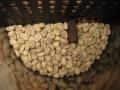 ジェネカフェの中のモカ・イルガチェフ生豆