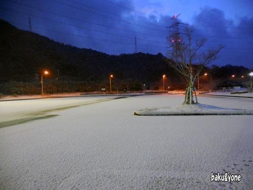鴻の池SA朝_003