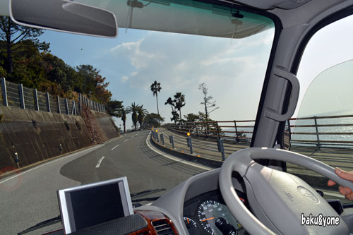 桂浜に向かう道