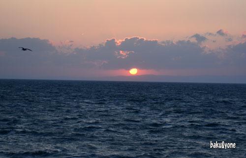 ホタルイカの夕日
