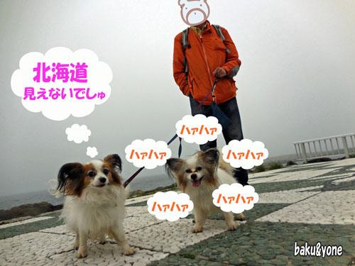 北海道見えないでしゅ
