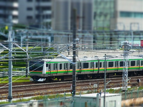 hirudaisugisaku18.jpg
