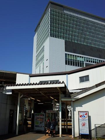 maguroya20.jpg