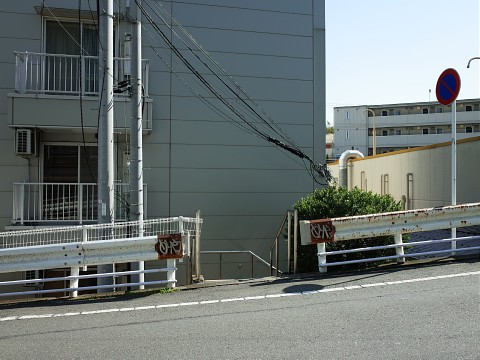 maguroya25.jpg