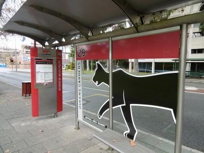 キャットのバス停は路線バスと別の場所にあります