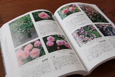 バラの本 中身