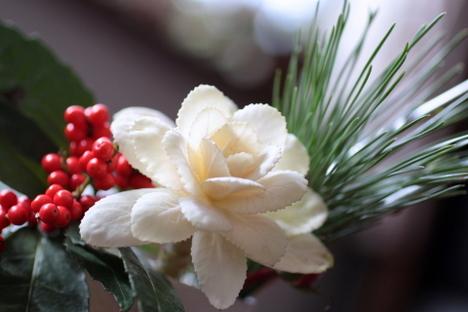 お正月の花その後2