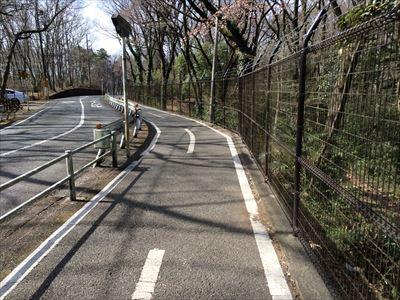 tamakoji2.jpg