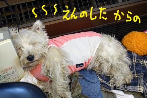 ishikinasinokoudouomosiroi3.jpg
