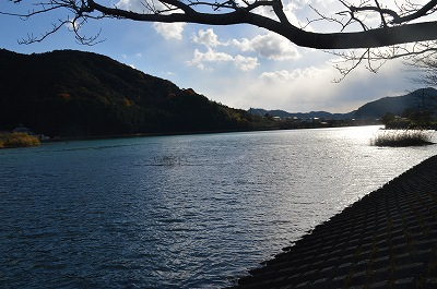 向かいの山にも熊野古道が