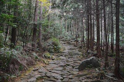 石畳のある道