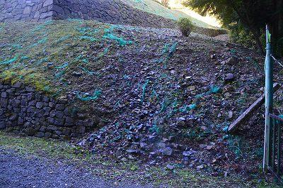 垣間見える崩れた石垣