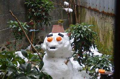 雪だるまメジロ